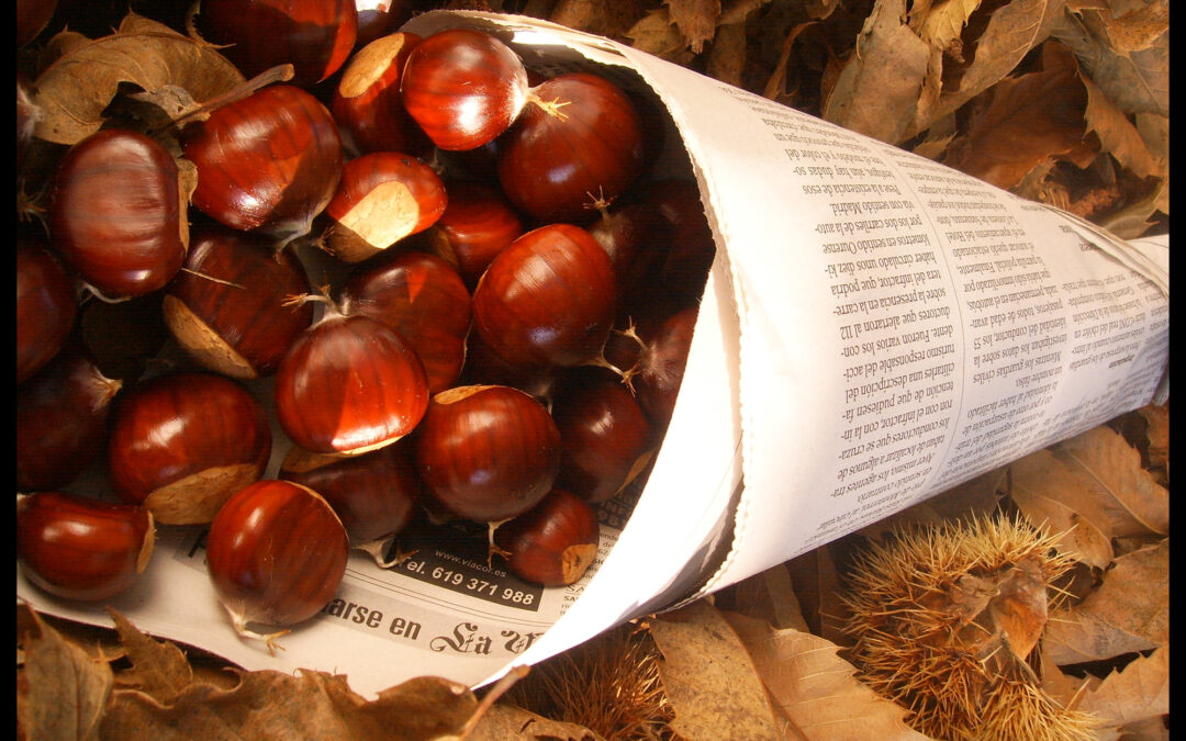 The smell of chestnuts permeates Malaga, with the arrival of autumn